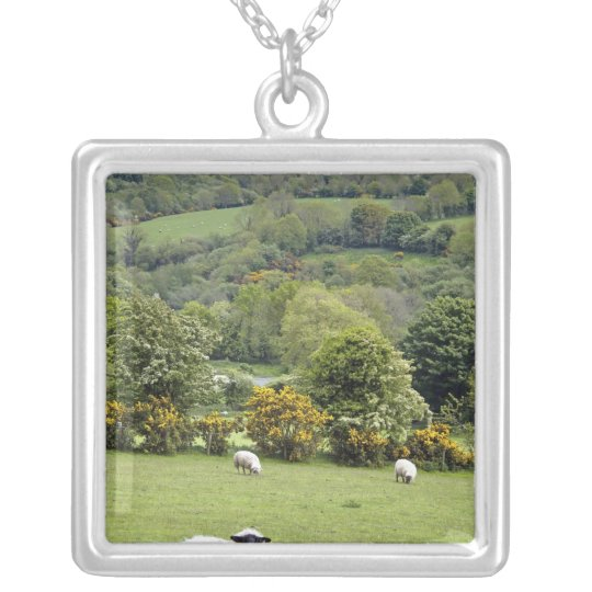 Western Ireland, Dingle Peninsula, broad Silver Plated Necklace