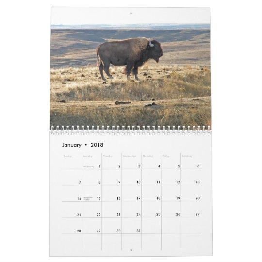 Western Kansas Buffalo Calendar