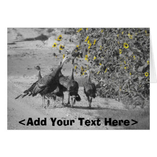Western Kansas Turkey and Sunflowers Card