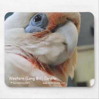 Western (Long Bill) Corella Mouse Pad