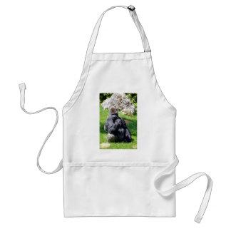 Western lowland gorilla sitting grass aprons