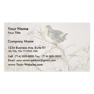 Western Meadowlark Business Card