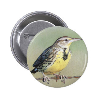 Western Meadowlark Button