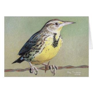 Western Meadowlark Card