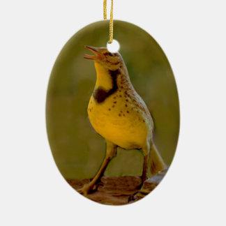 Western Meadowlark (Kansas, Montana, Nebraska) Ceramic Ornament
