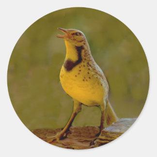 Western Meadowlark (Kansas, Montana, Nebraska) Classic Round Sticker