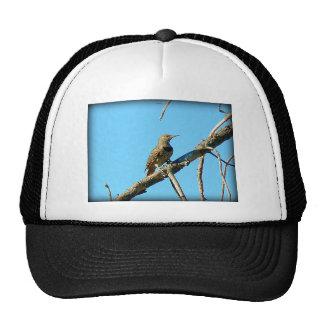 Western Meadowlark Mesh Hats