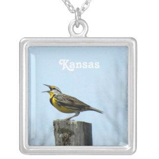 Western Meadowlark Jewelry
