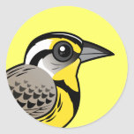 Western Meadowlark Round Stickers