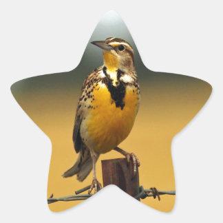 Western Meadowlark Star Sticker