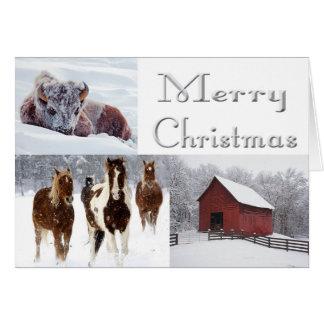 Western Merry Christmas Card