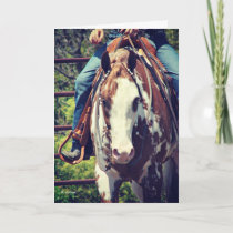 Western Paint Horse, Birthday Card