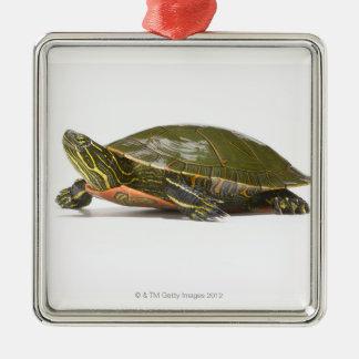 Western painted turtle (Chrysemys picta bellii), Metal Ornament