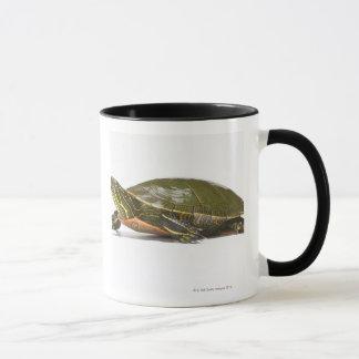 Western painted turtle (Chrysemys picta bellii), Mug