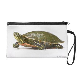 Western painted turtle (Chrysemys picta bellii), Wristlet Purse
