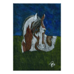 Western pinto horse posters