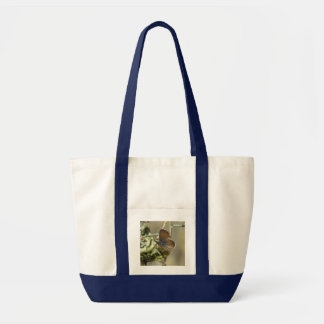 Western Pygmy Blue Butterfly Bag