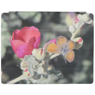 Western Pygmy Blue Butterfly iPad Cover
