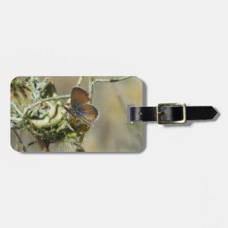 Western Pygmy Blue Butterfly Luggage Tag
