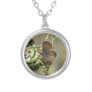 Western Pygmy Blue Butterfly Necklace