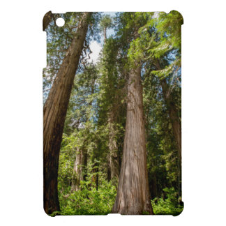 Western Red Cedar Trees Case For The iPad Mini