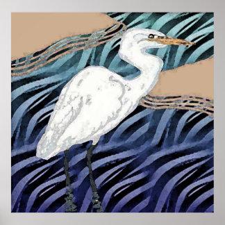Western Reef Heron Poster