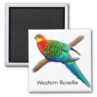 Western Rosella Parrot Magnet