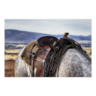 Western Saddle on Gray Horse Poster