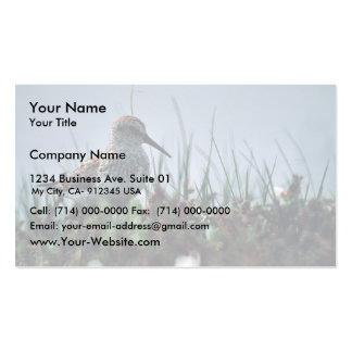Western Sandpiper Double-Sided Standard Business Cards (Pack Of 100)