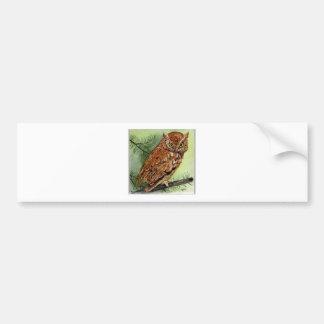 Western Screech Owl Bumper Sticker