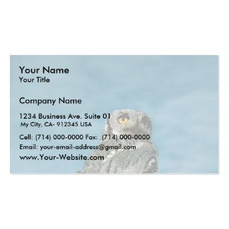 Western screech owl Double-Sided standard business cards (Pack of 100)
