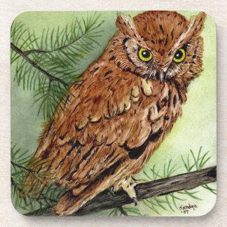 Western Screech Owl Drink Coaster