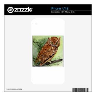 Western Screech Owl iPhone 4S Skin