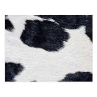 Western Style Cowhide Black/White Print Postcard