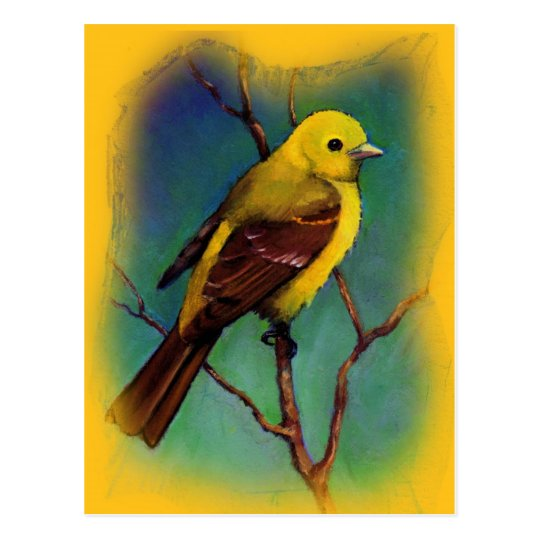 Western Tanager, Bird in Oil Pastel Postcard