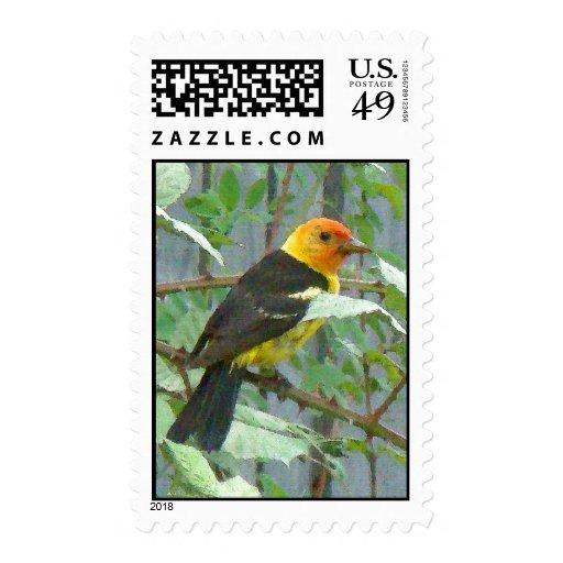 Western Tanager Bird Postage