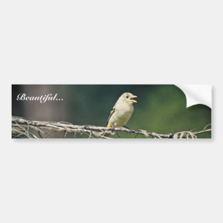 Western Tanager Bumper Stickers