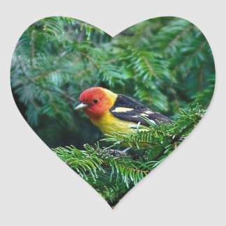western Tanager Heart Sticker