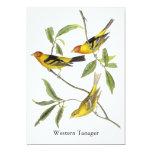 "Western Tanager - John James Audubon 5"" X 7"" Invitation Card"