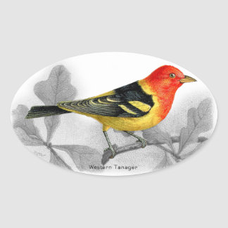 Western Tanager Oval Sticker