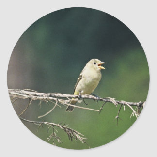 Western Tanager Sticker