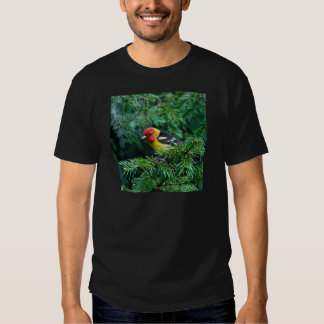 western Tanager Tee Shirt