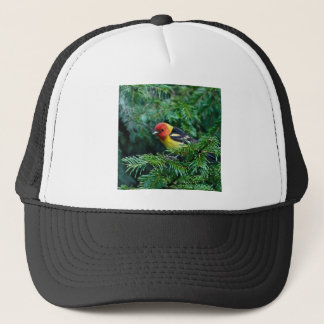 western Tanager Trucker Hat