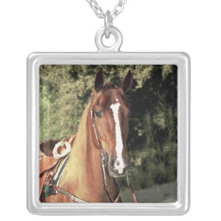 Western Tennessee Walking Horse Square Pendant Necklace