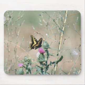 Western Tiger Swallowtail (3) Mouse Pad