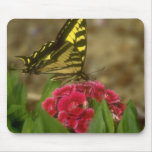 Western Tiger Swallowtail (5) Mousepads