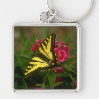 Western Tiger Swallowtail (7) Silver-Colored Square Keychain