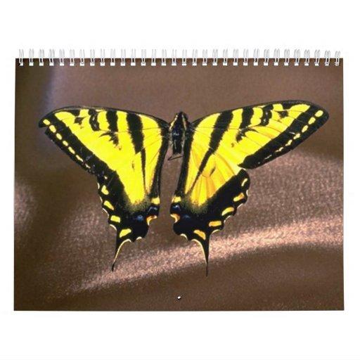 Western Tiger Swallowtail (8) Wall Calendars