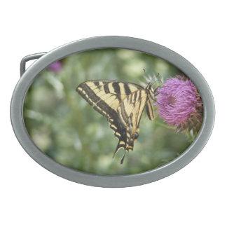 Western Tiger Swallowtail Butterfly Belt Buckle
