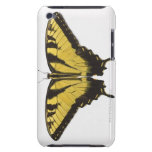 Western Tiger Swallowtail Butterfly Barely There iPod Cases